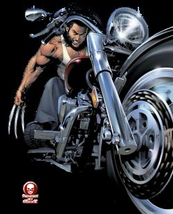 Wolverine-bike