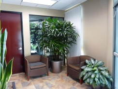 office-plants-1