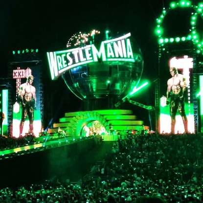 Triple_H_makes_his_entrance_at_WrestleMania_33
