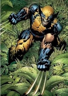 Marvelwolverine