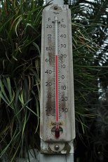 319px-Taylor_thermometer_-_Volunteer_Park_Conservatory_01_(24987662776)