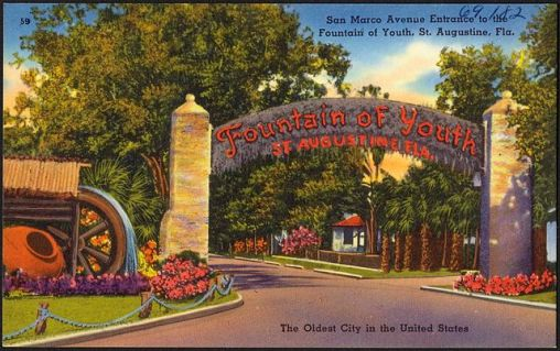 640px-Fountain_of_Youth_postcard